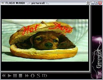 おすすめフリーソフト フラッシュプレイヤー FLASH MANIA フラッシュマニア
